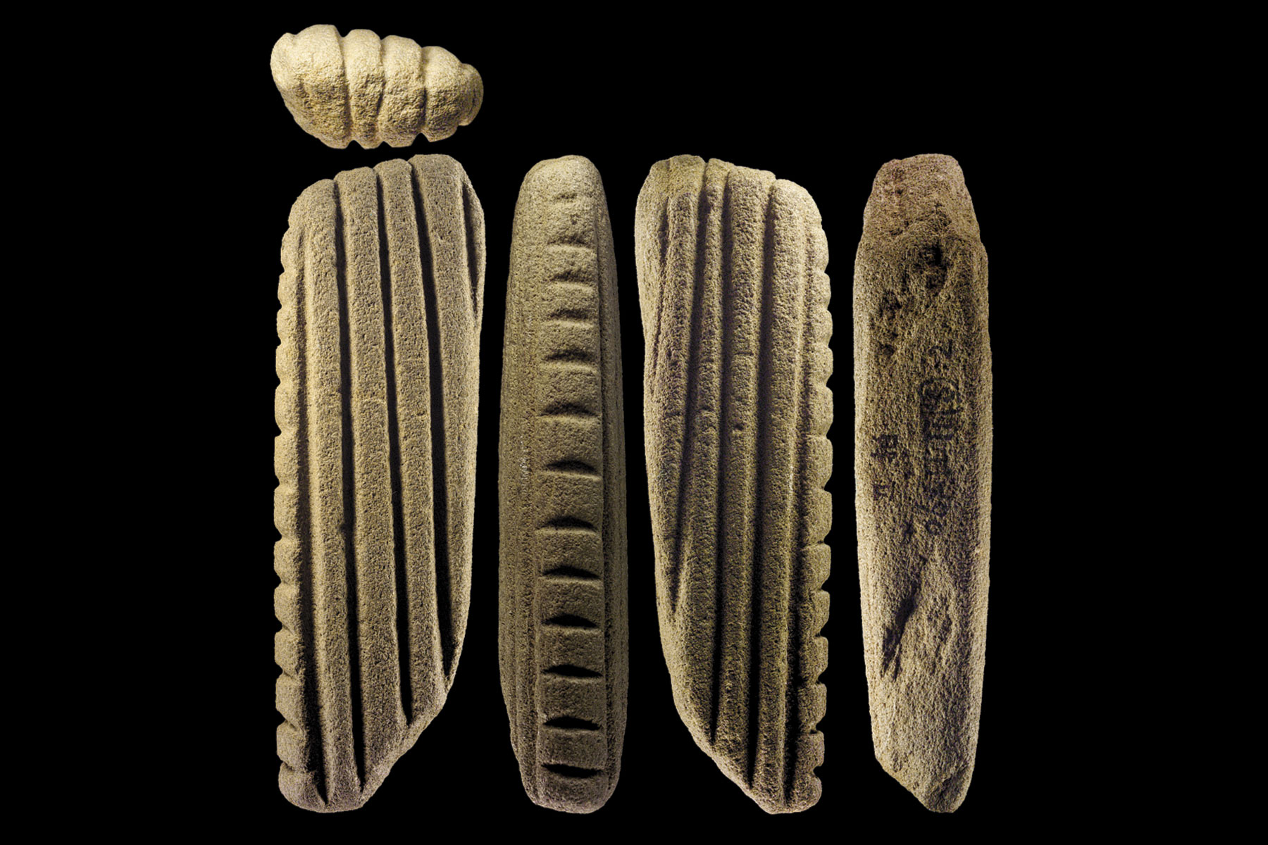The oldest barkcloth making tool in the world - from the Xiantouling site, Shenzhen.