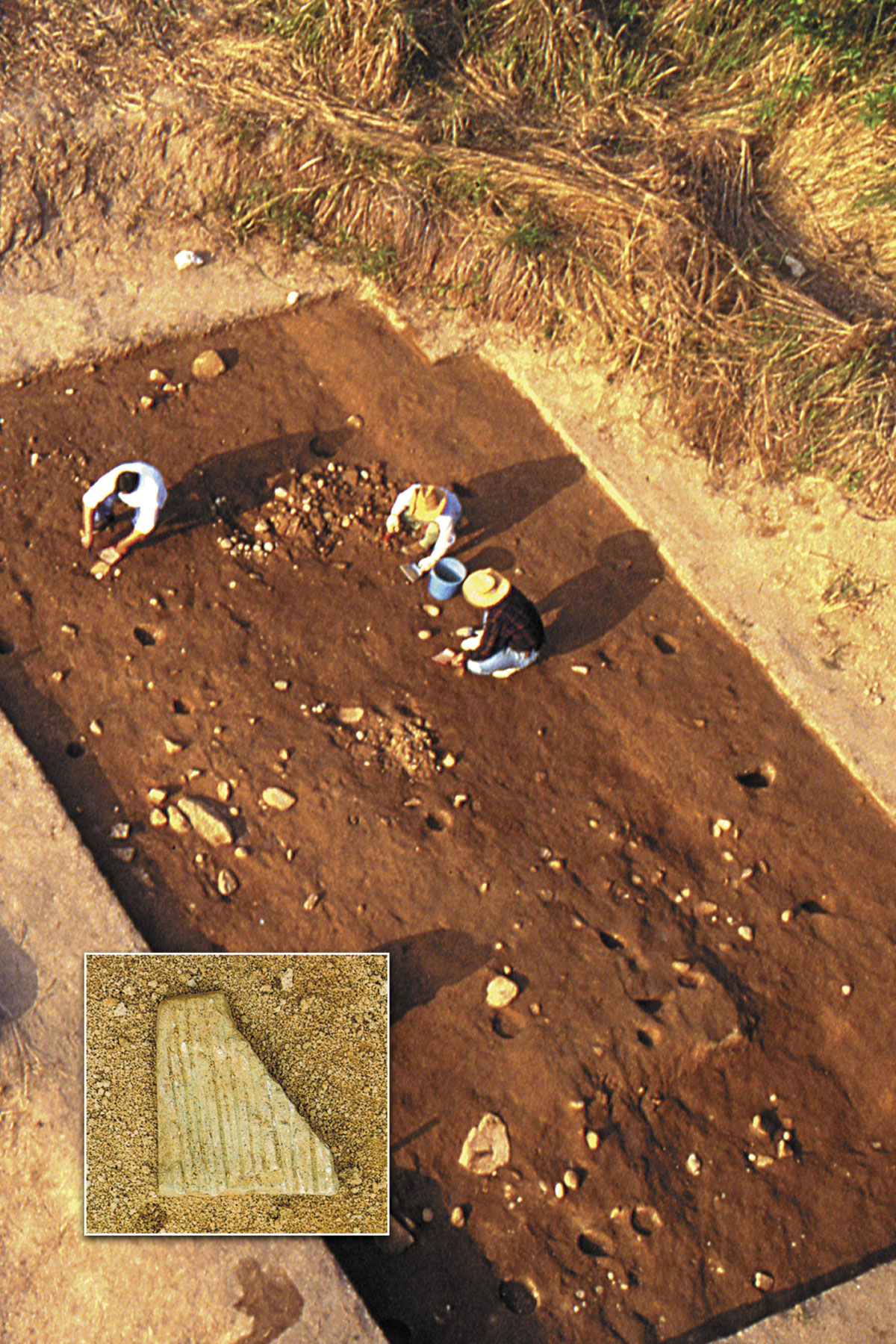 Stone beater in-situ near the 6,200-year-old house remains at the Tai Wan site in Hong Kong