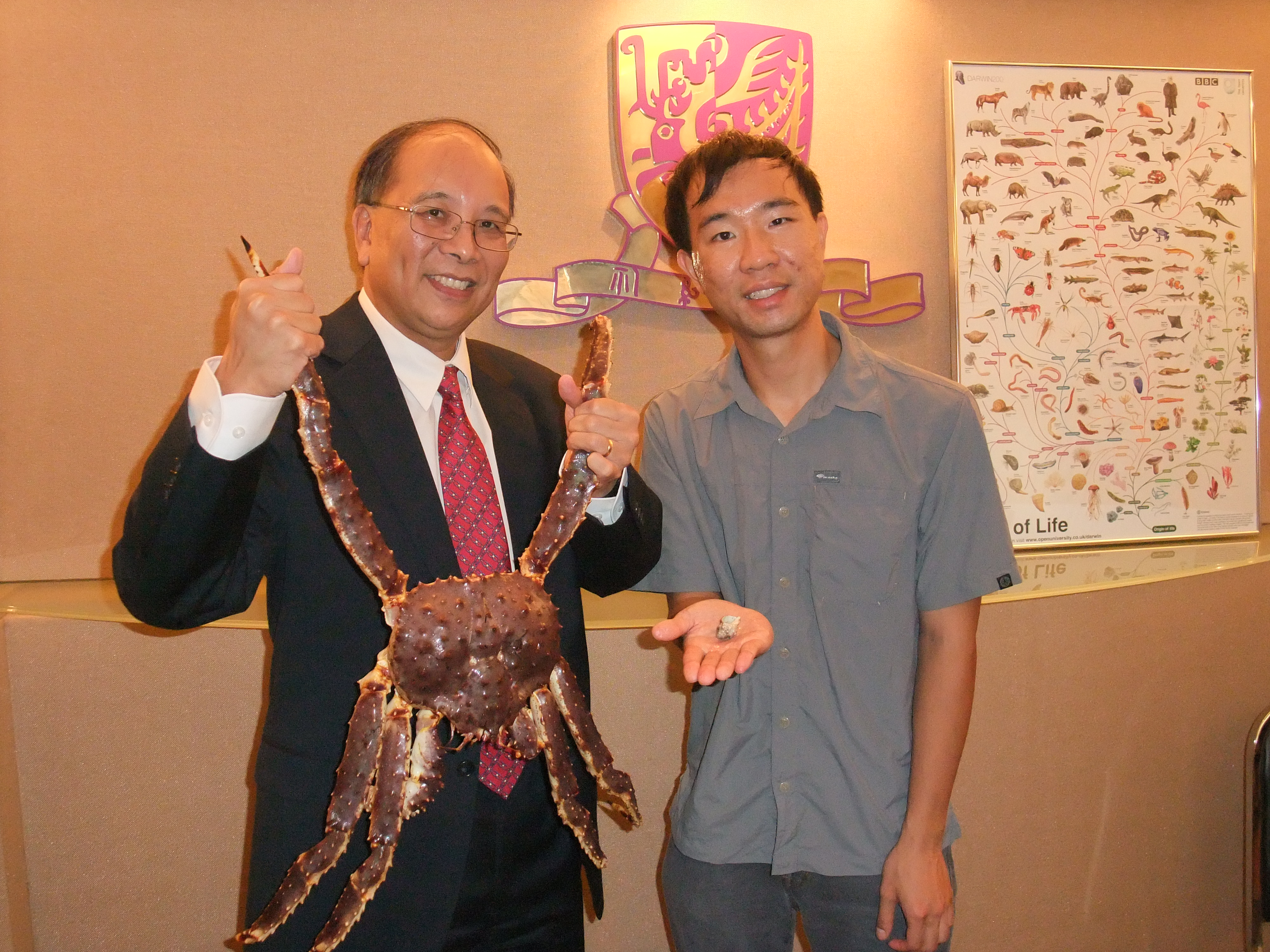 Prof. Chu Ka-hou (left) and Dr. Tsang Ling-ming show the dramatic difference in size between king crabs and hermit crabs.