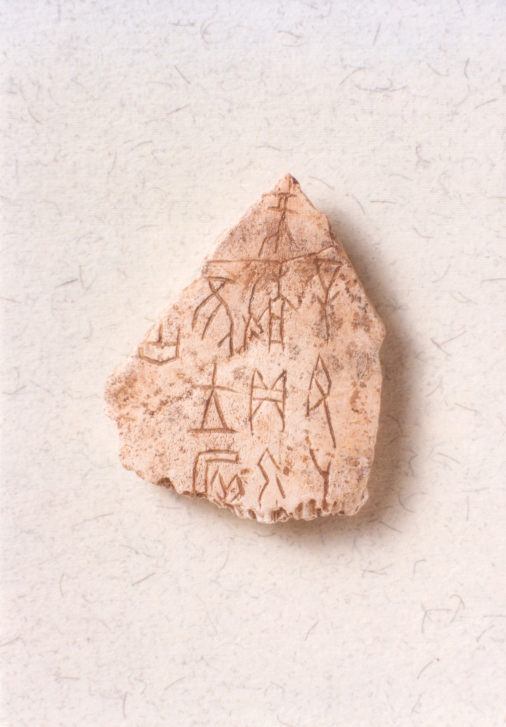 Oracle Bones Shang dynasty (ca. 1675-1029 BC) 56 pieces Collection of United College, CUHK
