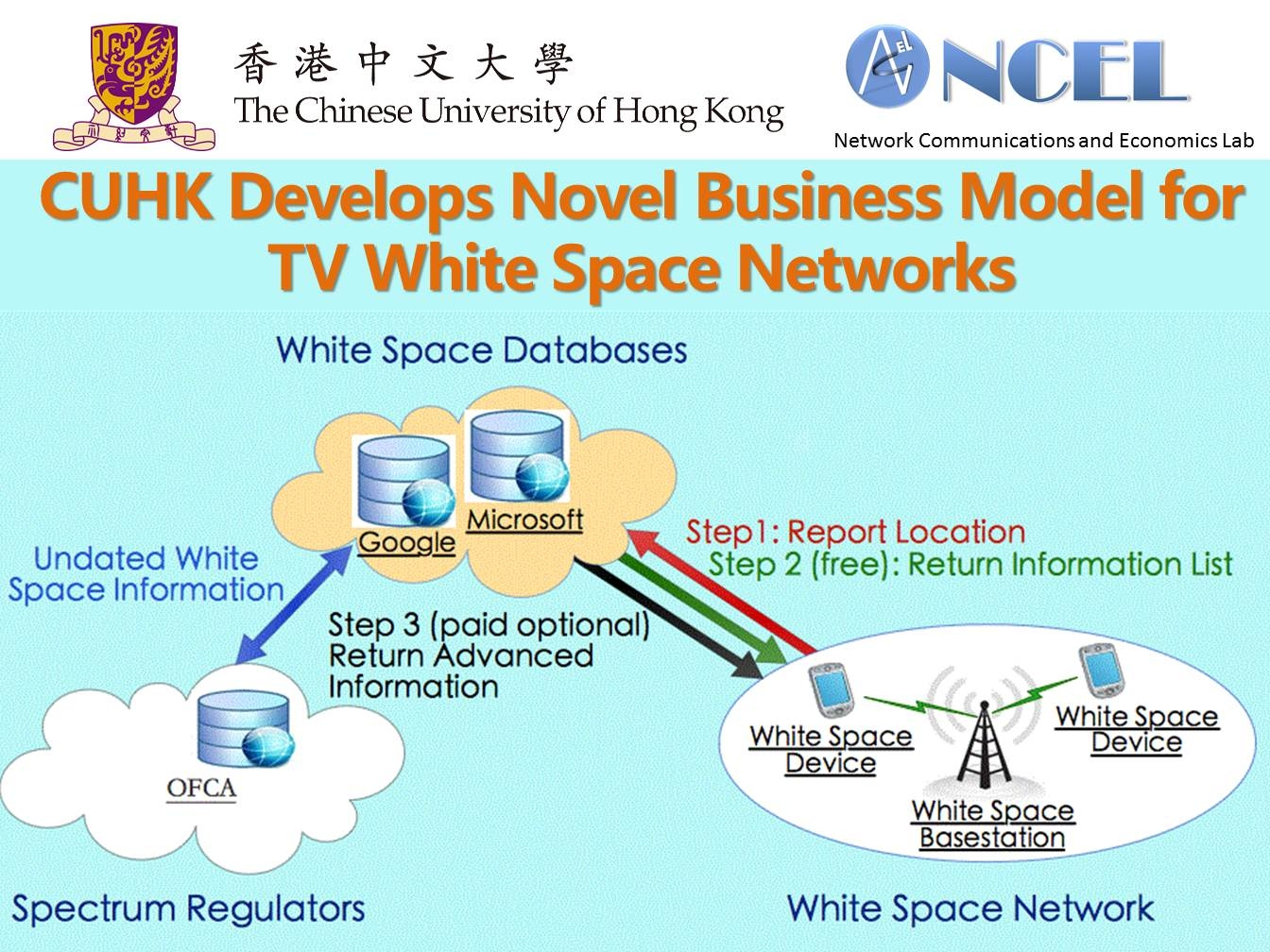 The information market model for TV white space networks.