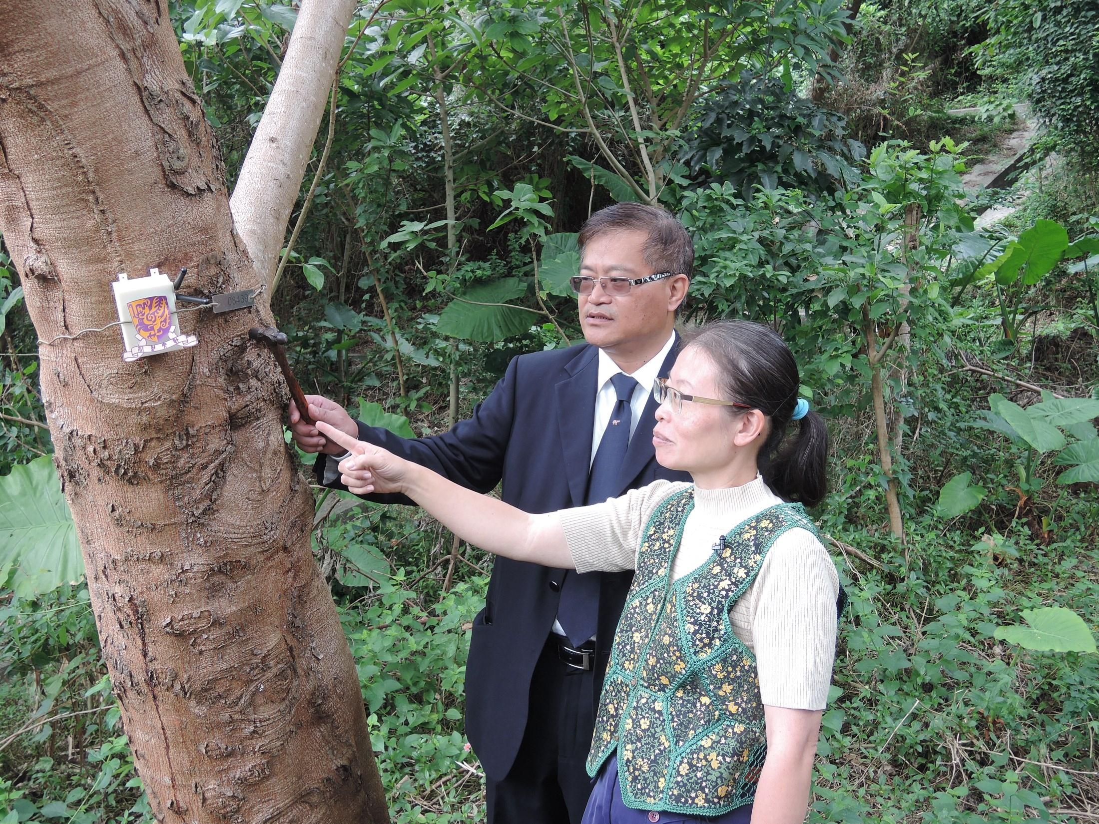「護樹監控系統」協助管理人員全天候監察樹木的狀況。
