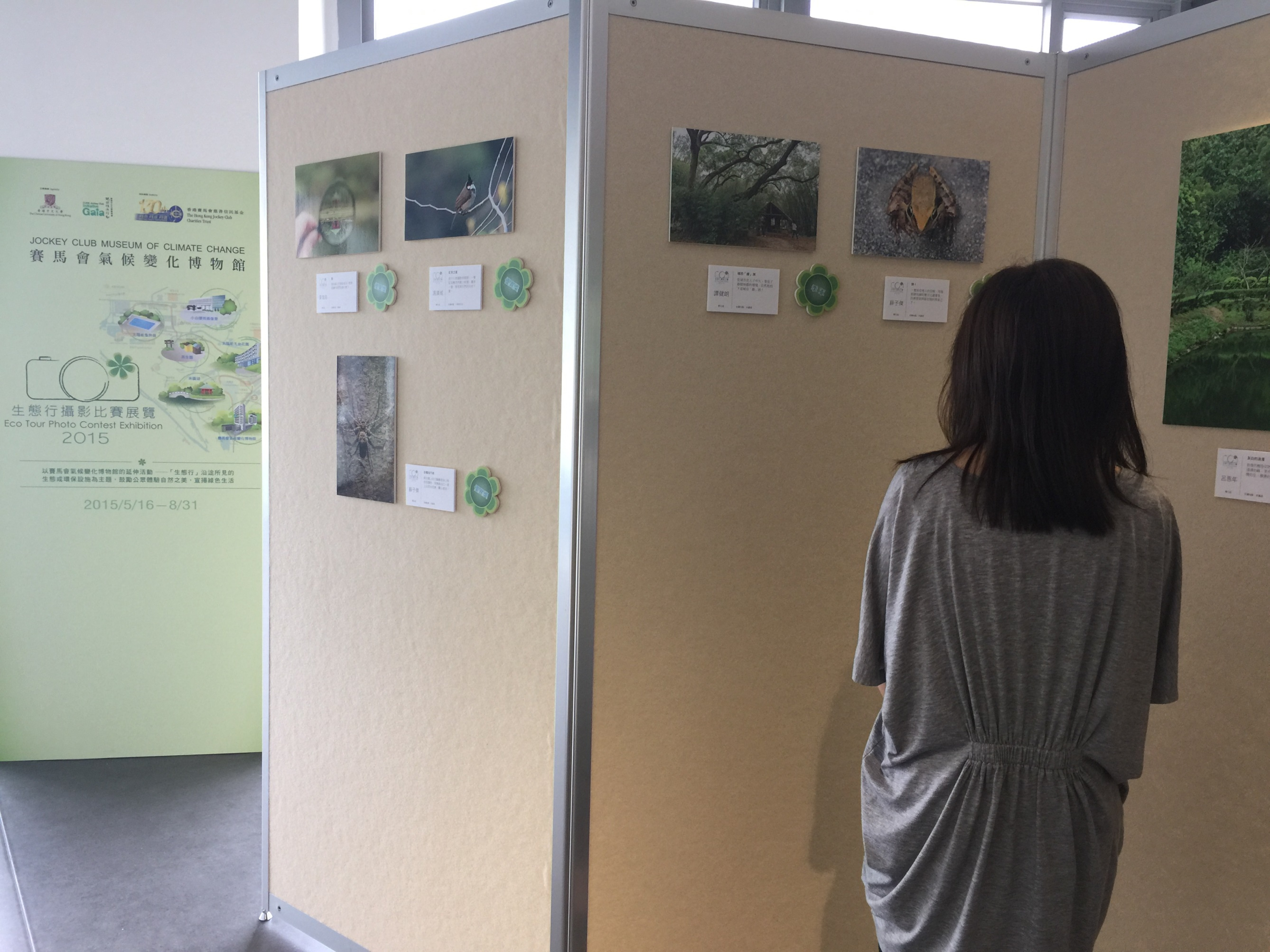 Thirty-nine selected entries of the contest are on display at MoCC till 31 August 2015.