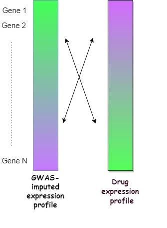 將特定藥物的表達圖譜,與目標疾病的全基因組關聯分析結果的表達圖譜,作反向比對,研究團隊可以了解該藥物對目標疾病的效用。