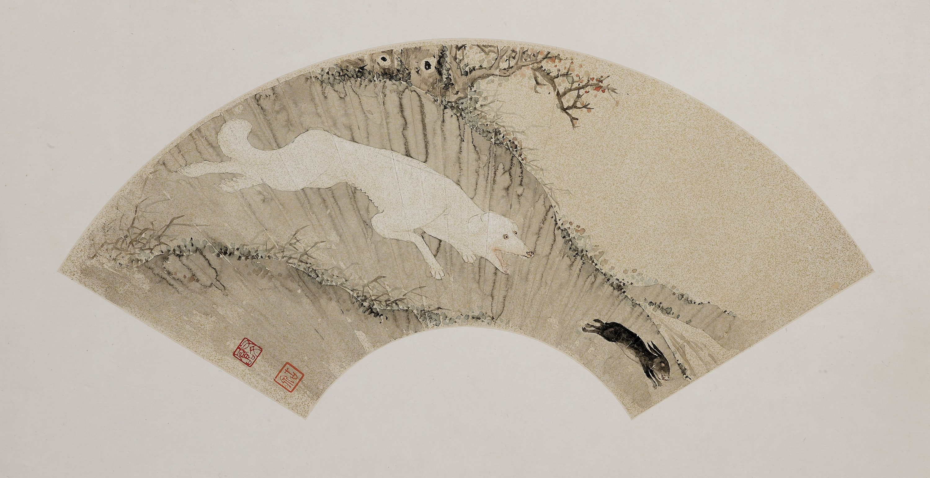 """Hound Hunting Rabbit Ju Lian (1828—1904) Folding fan, ink and colour on gold-flecked paper Gift of Mr. Ho Iu-kwong, Mr. Fok Bo-choi, Mr. Li De and others  Art museum collection  Acc. no. 1973.0324  The long leg and slim belly give great speed and agility to the sighthound, which make it possible to chase preys like rabbit. This uncommon scenario of hound's hunting was captured by a Late-Qing Cantonese painter Ju Lian, who mostly painted plants and animals in albums and on fans. The painting was done in Ju's famous techniques called """"boneless (no outline)"""" and """"break-in (i.e. dashing water against a moist surface)""""."""
