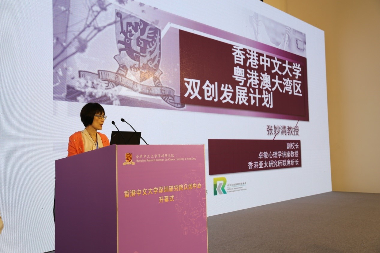 Professor Fanny Cheung, Pro-Vice-Chancellor of CUHK explains the innovation and entrepreneurship projects of CUHK
