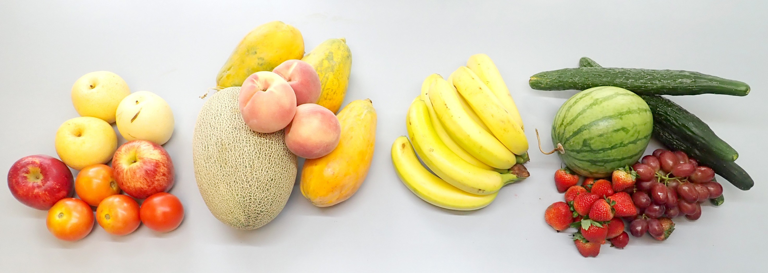 Eudicots fruits apple, pear and tomato (1st from left) evolve their fruits using duplicated floral identity genes, while melon, peach and papaya (2nd from left) utilise existing senescence genes. The monocot banana (2nd from right) uses both to form two interconnected circuits. Eudicots fruits such as watermelon, cucumber, grape and strawberry (1st from right) evolve a different ripening system that is ethylene independent.