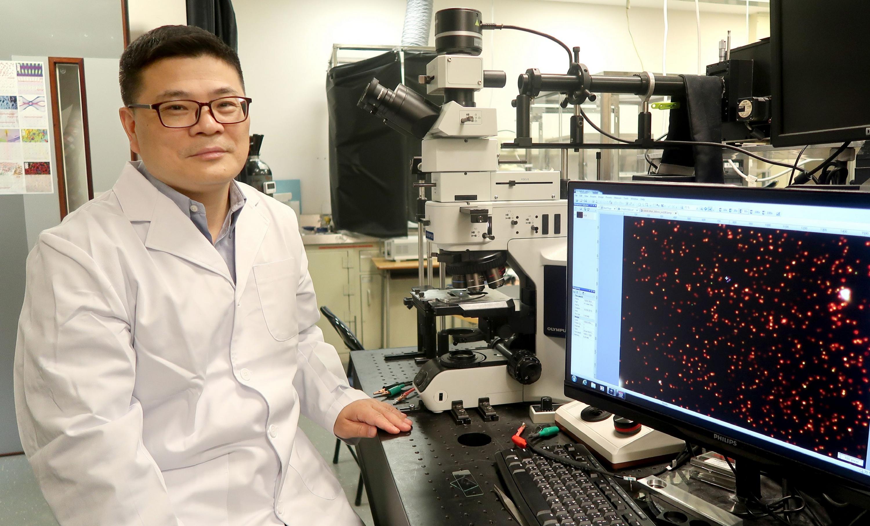 Professor Jianfang Wang, Professor, Department of Physics, CUHK