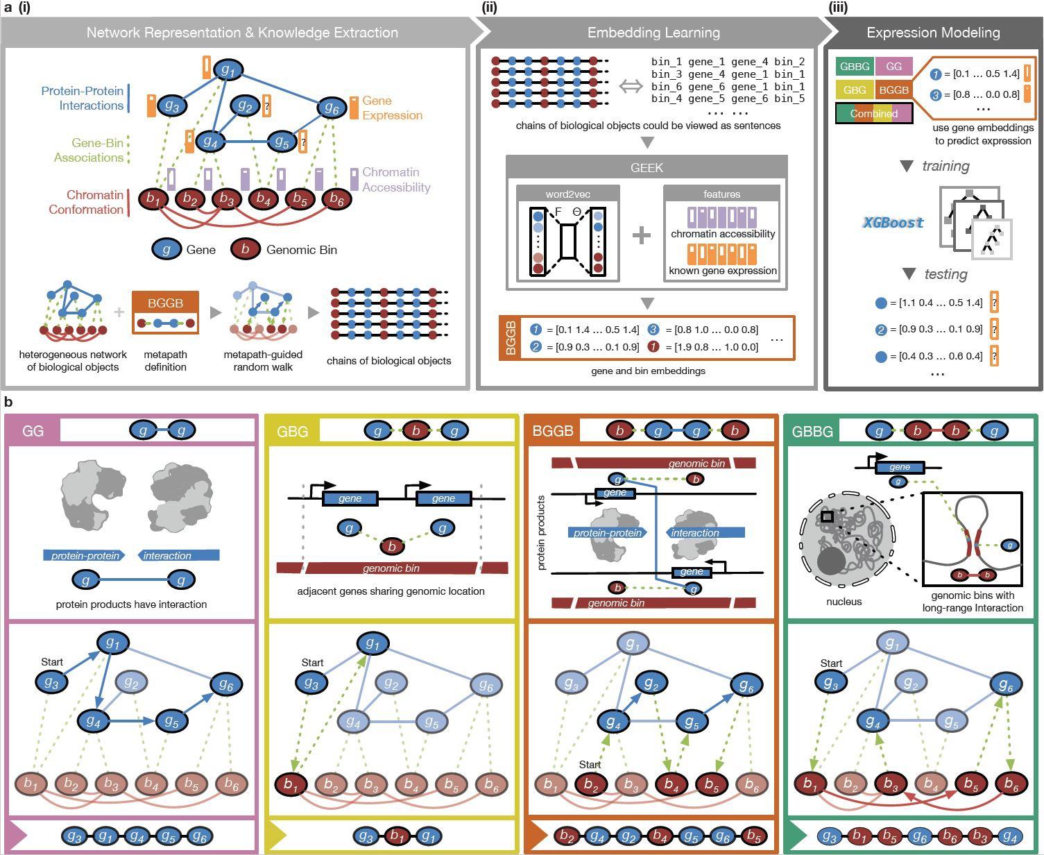 上图显示如何透过机器学习和自然语言处理技术研究多种基因调控机制。