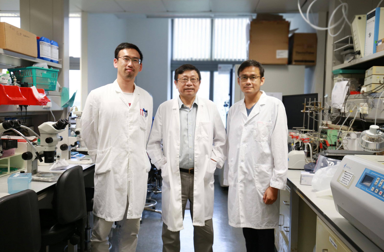 (左起)駱江云博士、黃聿教授及王力博士