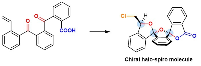 Image 2: The team led by Professors Ying-Lung Steve TSE and Yeung-Ying YEUNG successfully synthesized chiral halo-spiro molecules and explained how the process works.