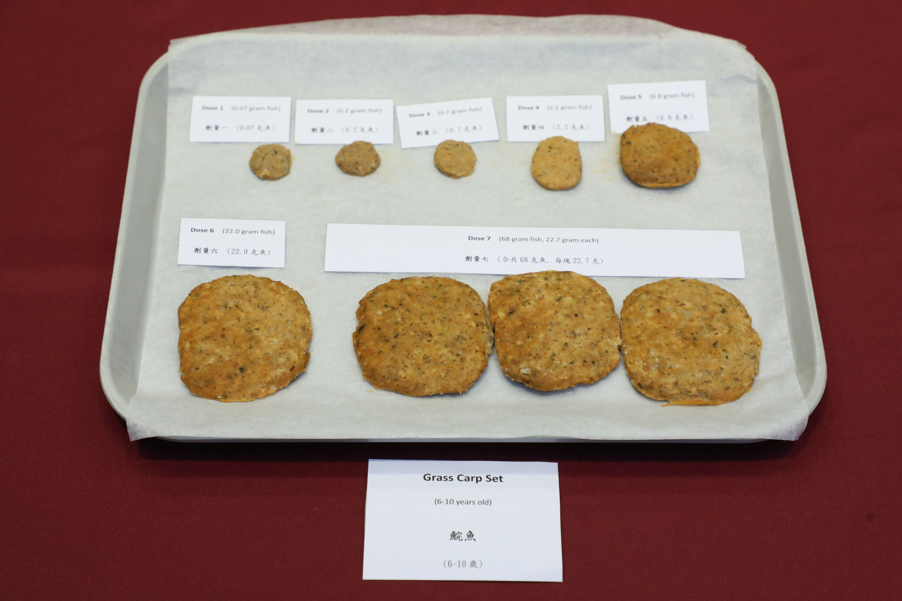 """Double-blind placebo-controlled oral food challenge"" is a gold measurement for food allergy diagnosis. The meat pies shown in the photo are with a mixture of pork and grass carp. Each of the pieces are in different portion of grass carp for accurate testing. Since different herbs and flavorings are added to the meat pies, participant can hardly tell what are the ingredients."