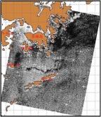 圖1:2010年5月19日10時13分ASAR油污遙感探測圖像