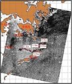 圖2:2010年5月19日10時13分ASAR油污遙感探測面積估算  長度合計 = 34.3 Km 平均寬度 = 0.5 Km 厚度 = 0.1mm (參考原油/燃料油厚度) 大約面積 = 17.15 平方公里 大約體積 = 1715 立方米