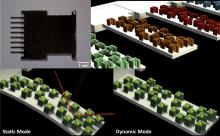 微型懸臂傳感器組合塗上不同分子印跡聚合物,檢測空氣中的多環芳烴