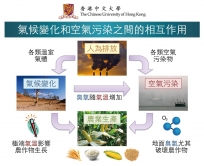 The interactive effects of climate change and air pollution on agriculture