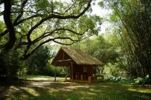 建筑学院师生于未圆湖畔搭建的草庐。