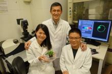 姜教授與其科研團隊致力研究蛋白質傳輸機理及細胞器的生物形成機制。
