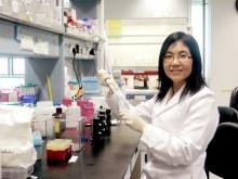 Prof. Jun Yu