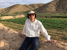 Professor Hon-ming Lam successfully grew stress-tolerant soybeans in Gansu in 2016 to help improve or restore arable land.