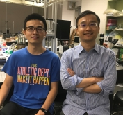 Professor Lei Xu (right), professor, and Dr. Hongchuan Shen (left), post-doctoral fellow, from the Department of Physics, CUHK, reveal a fundamentally new pattern-forming paradigm.