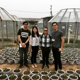 Professor Tai (second right) and his team (left to right: Dr Felix Leung, Xueying Shirley and Mehliyar Sadiq) visit the experimental site for investigating ozone and plant interaction at the Institute of Atmospheric Physics, Chinese Academy of Science in Beijing.