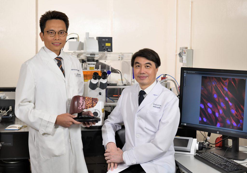 中大醫學院生物醫學學院鄭詩樂教授(左),聯同中大醫學院病理解剖及細胞學系系主任杜家輝教授進行的研究,發現一種名為HDAC8的促癌基因是導致癌腫瘤排斥免疫細胞的關鍵。