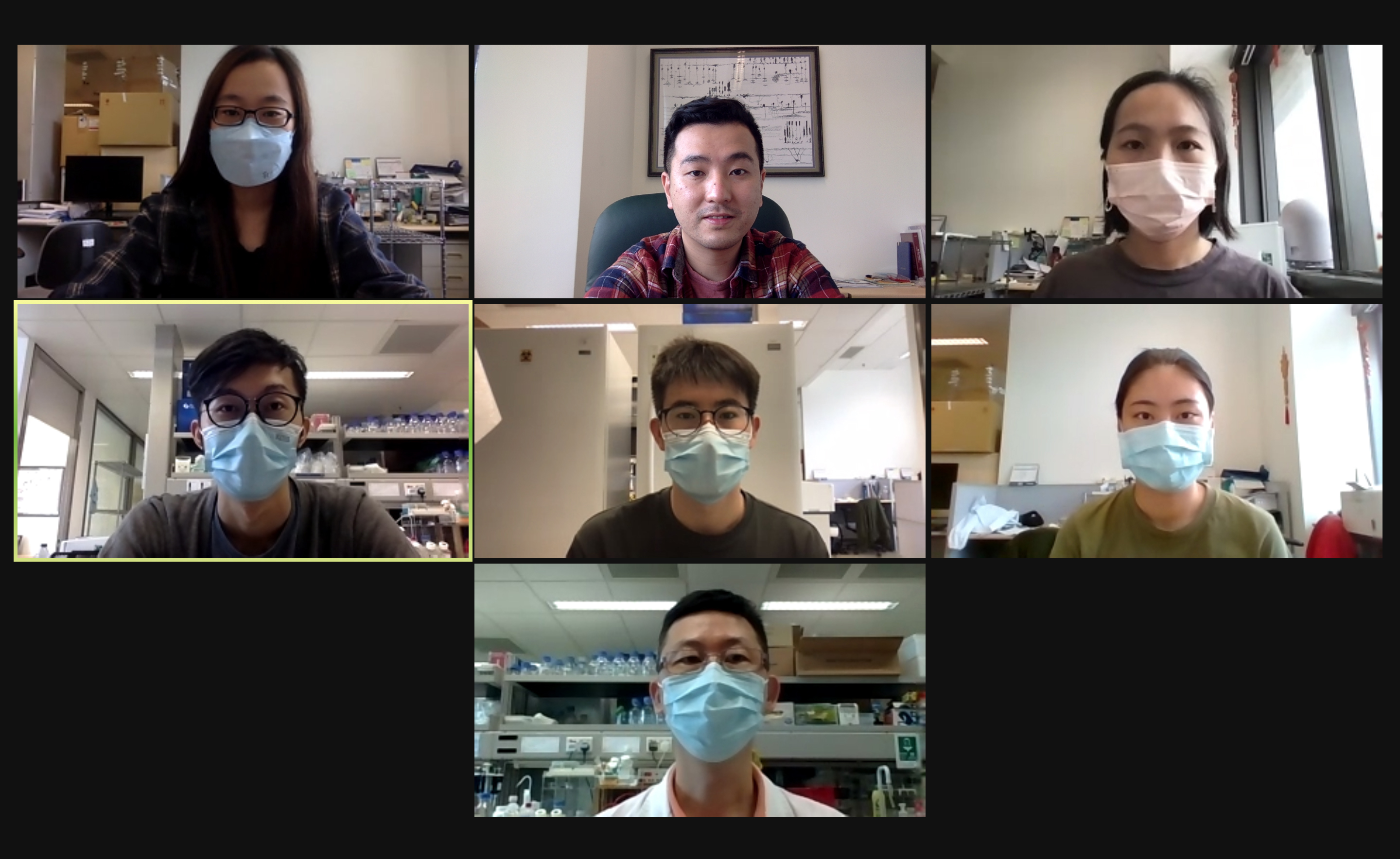Prof. Ip conducts a zoom discussion with all his laboratory team members.