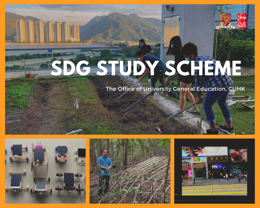 The SDG Study Scheme combines knowledge-based learning with experiential learning.