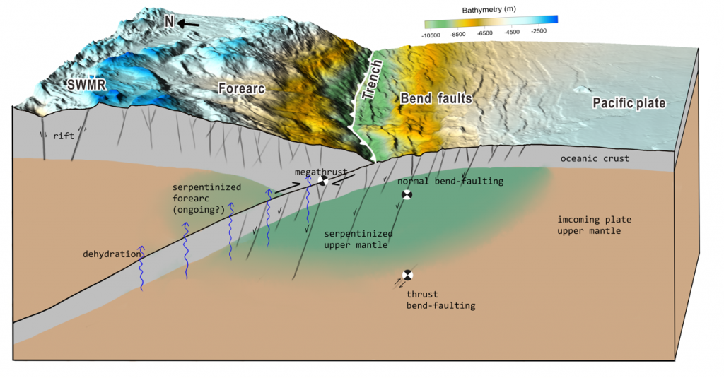 Figure 2:  Pervasive faults within the Pacific plate are generated by plate bending before it is subducted, providing pathways to transport water into the Earth. Under certain temperature and pressure conditions, seawater interacts with rocks to form hydrous minerals (green area: serpentinized upper mantle) that lock the water into the rock. Then the water is carried into the subduction zone by the downgoing plate and some of it may be released by the dehydration process.